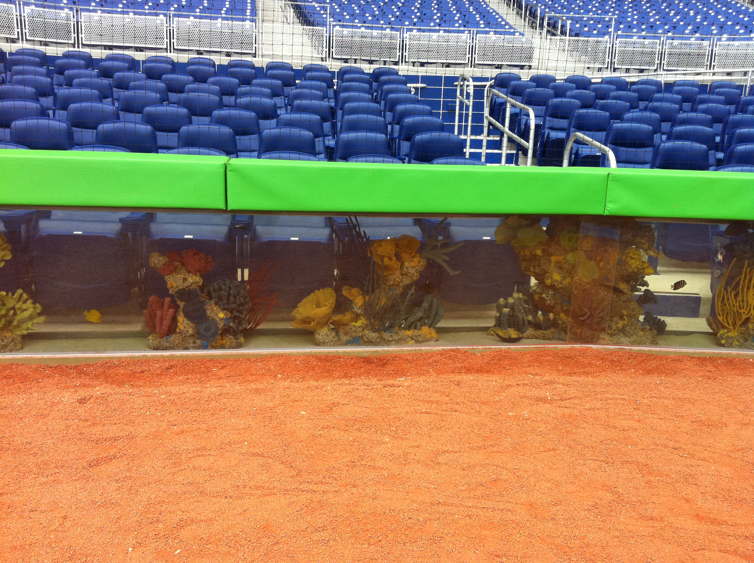 The fish tank behind home plate.