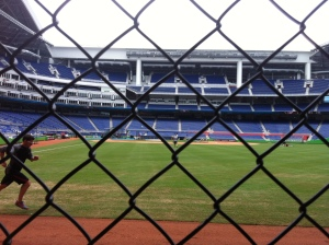 View from the seats just behind the right-field wall.